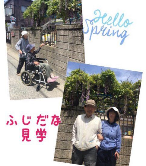 お花三昧〜(^^)